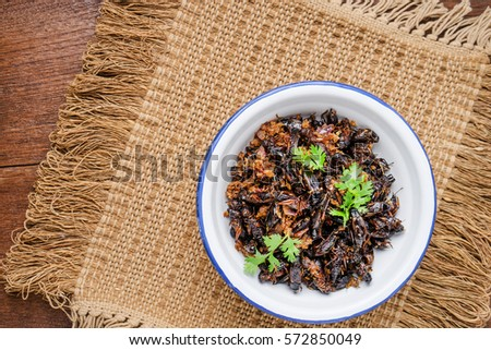 Food insect, Fried crickets in iron bowl on wooden table, Thai food.