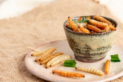 Food Insects: Bamboo worm or Bamboo Caterpillar insect fried crispy for eating as food items in bowl and plate ceramic on sackcloth, it is good source of protein edible for future food concept.