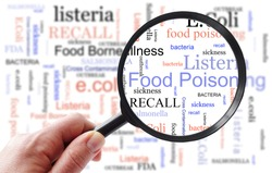Food poisoning related terms, salmonella, e coli etc,  in a word cloud with magnifying glass