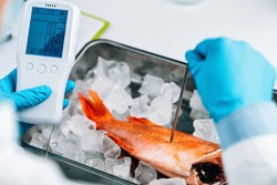 Food quality control inspection of sea fish - Measuring concentrations of heavy metals, searching for the presence of lead, mercury, cadmium.