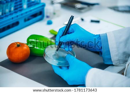 Food safety and quality analysis in a specialized microbiology laboratory, microbiologist working with fruit and vegetable samples Photo stock ©