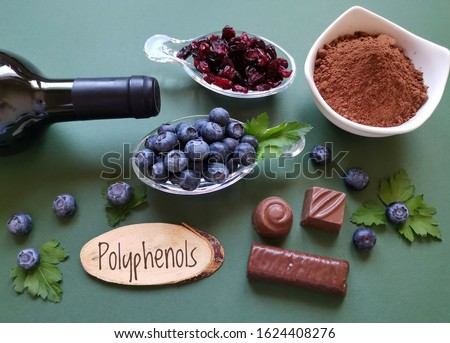 Foods rich in polyphenols. Natural sources of polyphenols: blueberry, red wine, dried cranberry, chocolate, cocoa. Polyphenols are compounds with antioxidant properties, offers various health benefits