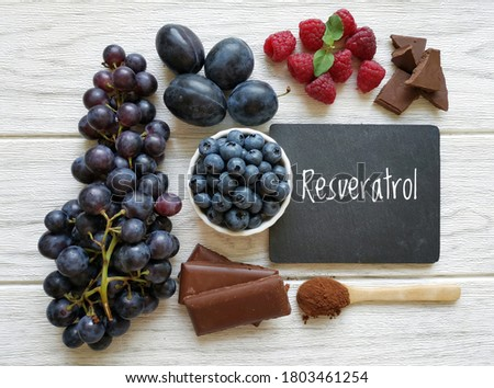 Foods rich in resveratrol. Resveratrol is a powerful antioxidant. Grape, plum, blueberry, raspberry, dark chocolate, and cocoa powder as natural sources of resveratrol and antioxidants. Healthy diet.