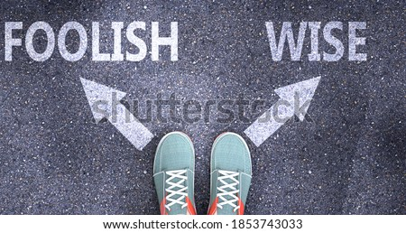 Foolish and wise as different choices in life - pictured as words Foolish, wise on a road to symbolize making decision and picking either Foolish or wise as an option, 3d illustration Сток-фото ©