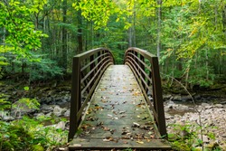 Foot bridge crossing a river or stream in a forest.