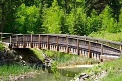 Foot Bridge in the Black Hills