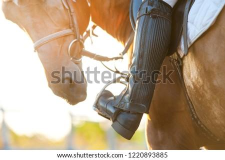 Foot in horse stirrup, close-up. Horse theme