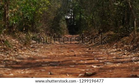 foot path, village path, walking ways #1299196477