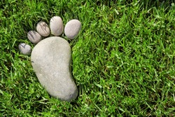 Foot print on grass with space for text