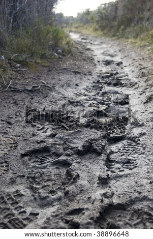 foot prints in the mud on a walking trail