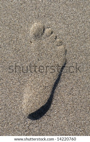 FOOT STEP IN THE SAND