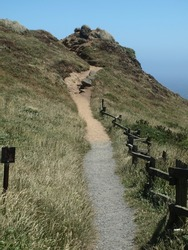 Foot trail at Point Arena State Park Northern California USA.