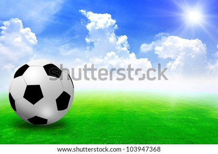 football field soccer stadium on the green grass blue sky