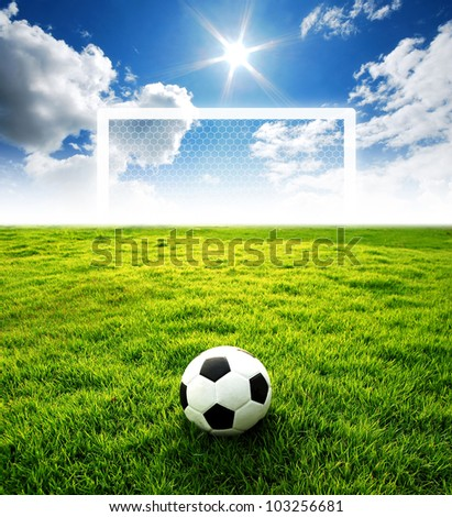 football field soccer stadium on the green grass blue sky sport game at background for design