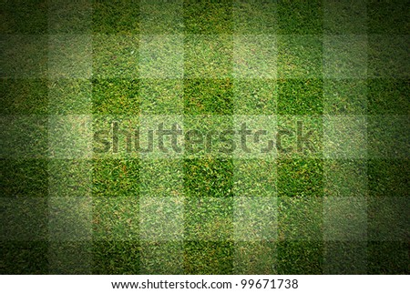 football grass background texture