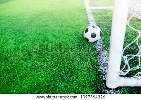 Football on goal line. It is not yet goal. ストックフォト ©