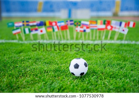Football pitch, world nations flags, blue sky, football net in background. Sport photo, edit space. #1077530978