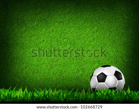 Football ( soccer  ball ) in green grass