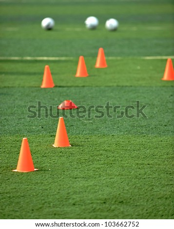 footballs and plastic obstacles on the soccer field.