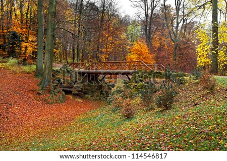 Footbridge in the autumn park. Autumn Landscape.  Park in Autumn. Landscape with the autumn forest. Dry leaves in the foreground. Lonely beautiful autumn tree.