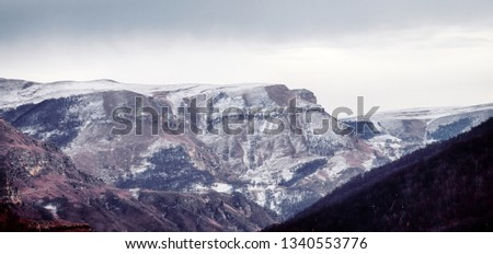 Foothills of Caucasus, Ciscaucasia. Huge ravines, cliff edge with rocky walls. Geology, sedimentary layer. Southern exposition of gorge is forest covered and Northern one is bare