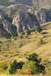 Foothills of the Bighorn Mountains in fall