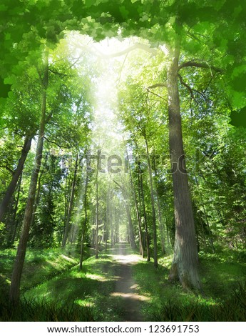 footpath between trees in green dark forest