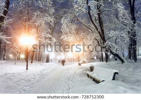 Shutterstock Footpath in a fabulous winter city park