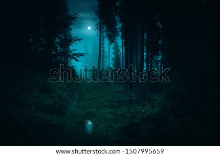 Footpath in the dark, foggy, mysterious forest. Full moon on the sky with reflection in the puddle on trail at spruce mystery night forest. Halloween backdrop.