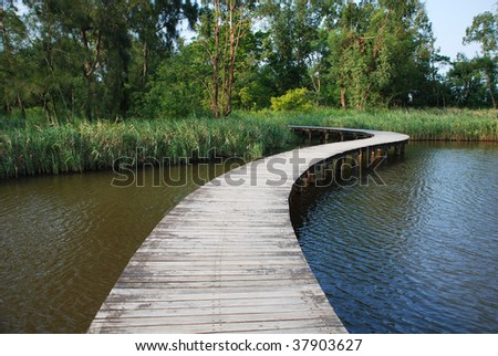 "Footpath over a small lake in Wetland park, ""Hong Kong"""