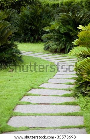 Footpath through shrubs in the garden