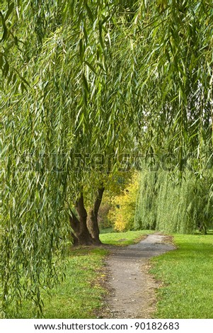 Footpath under willows in autumn park