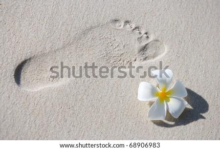 Footprint and frangipani flower on white sand tropical beach