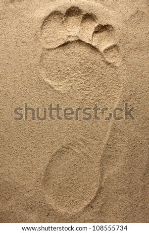 Footprint  feet on fine the beach sand
