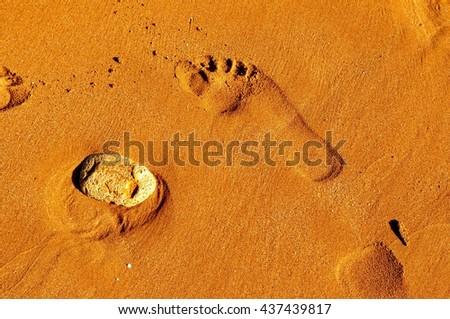 footprint in beach sand #437439817