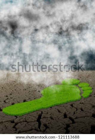 Footprint made of green grass in the middle of a desert / Carbon footprint and climate