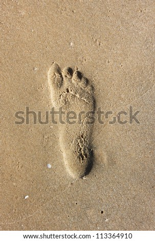 footprint on sea-sand - stock photo