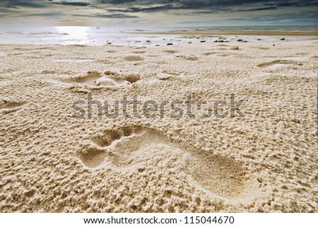 Footprints in a beach