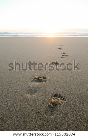 footprints in sand at beach