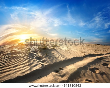 Footprints in the sand in desert at sunset