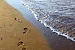 footprints in the sands of the sea