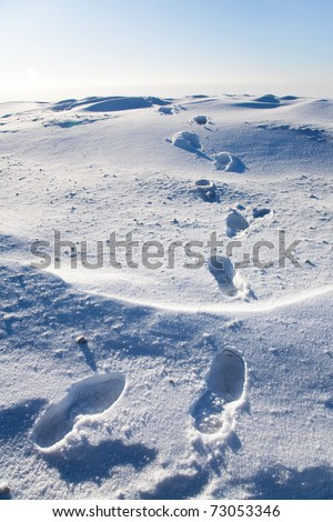 Footprints in the snow in the icy wilderness - stock photo