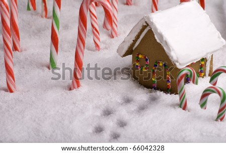 Footprints in the snow leading to Gingerbread cottage