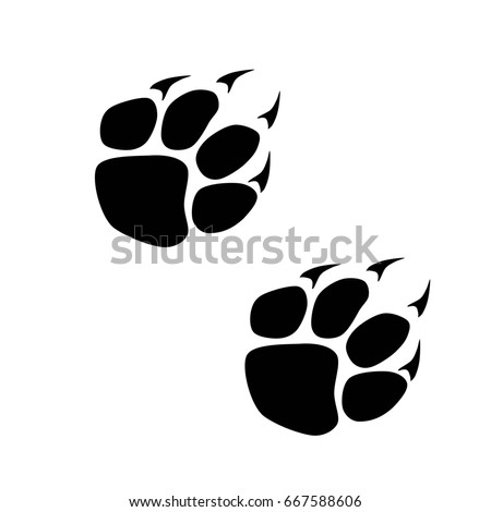 Footprints of a big cat. Panther or tiger traces