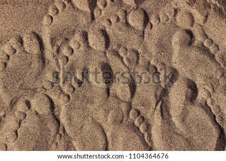 Footprints of a man's feet on the sand on a sunny day. Texture for background. Top view.