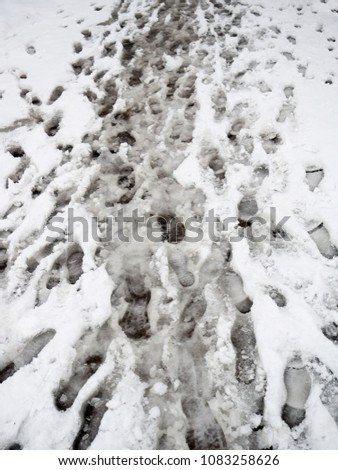 Footprints of an animal in the snow. texture #1083258626