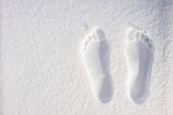 Footprints of the legs on the white sand
