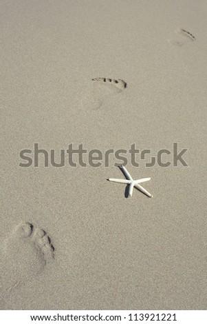 Footprints on a Hawaiian sandy beach with white starfish
