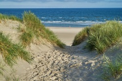 footprints on a path in the sand dunes of the north sea coast in scenic morning sunlight with blue sky - location: Vejers Strand, Denmark