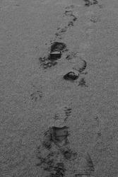 footprints on a sandy beach, black and white frame